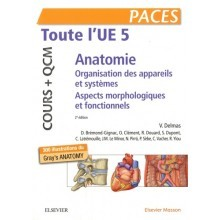 Anatomie : toute l'UE5 cours + QCM