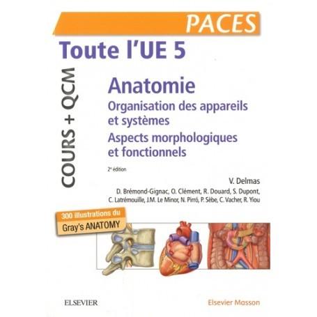 Anatomie UE5 : cours + QCM