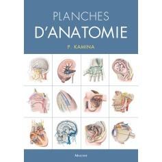 Planches d'anatomie, version spirales