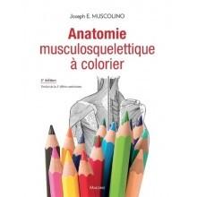 Anatomie musculosquelettique à colorier