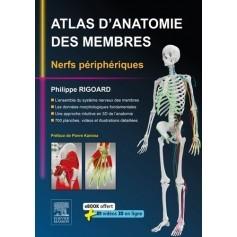 Atlas d'anatomie des membres : nerfs périphériques