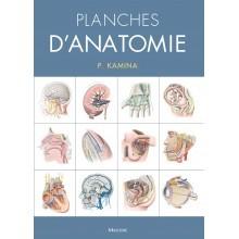 Planches d'anatomie, version coffret