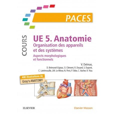 Anatomie UE5